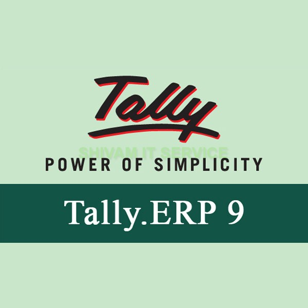 Tally.ERP 9 Silver Single user Edition Accounting Software